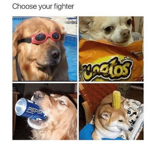 choose: Choose your fighter