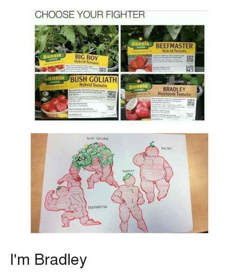 Big Boy, Big Boys, and Trendy: CHOOSE YOUR FIGHTER  Bonnie  Bonnie  BIG BOY  Tomato  aonnie  Hybrid Tomato  Bonn  PRICE  BUSH GOLIATH  BRADLEY  BEEFMASTER  BEEFMASTER  Hybrid Tomato  BRADLEY  Heirloom Tomato  BIG Boy I'm Bradley