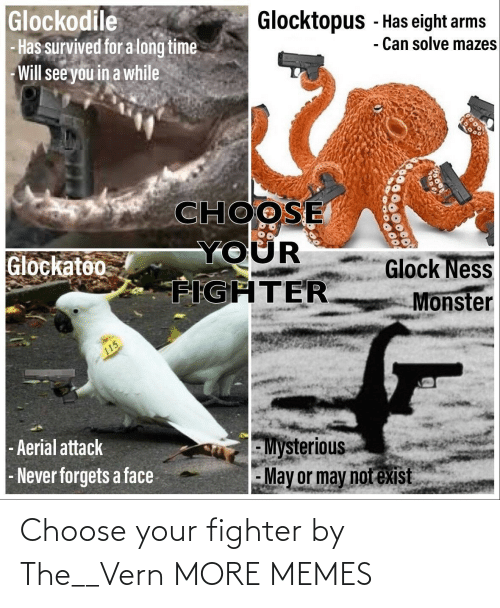 fighter: Choose your fighter by The__Vern MORE MEMES