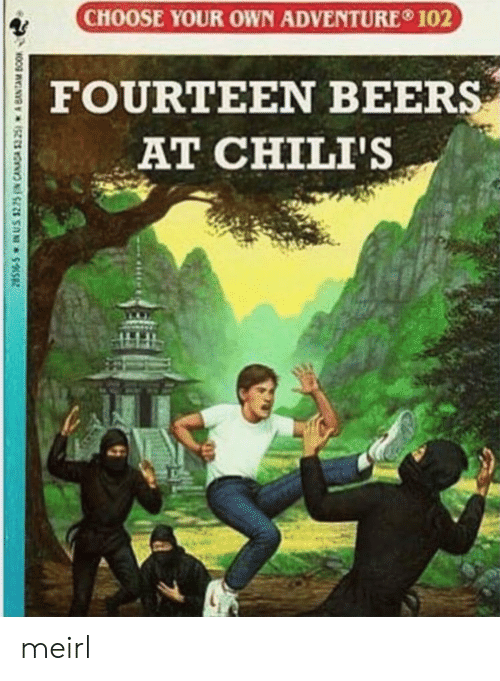 chilis: CHOOSE YOUR OWN ADVENTURE 102  FOURTEEN BEERS  AT CHILI'S  28S-S IN US $225N CANADA $325) A BANTAM BOOK meirl