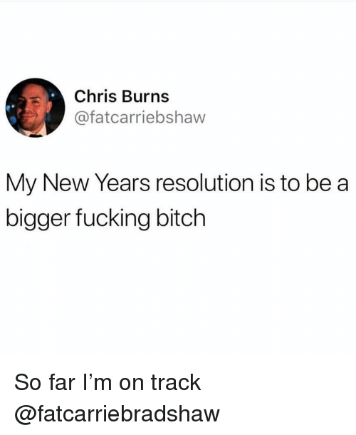 Bitch, Fucking, and Girl Memes: Chris Burns  @fatcarriebshaw  My New Years resolution is to be a  bigger fucking bitch So far I'm on track @fatcarriebradshaw