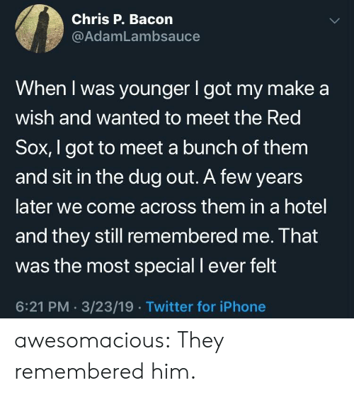Meet The: Chris P. Bacon  @AdamLambsauce  When I was younger I got my make a  wish and wanted to meet the Red  Sox, I got to meet a bunch of them  and sit in the dug out. A few years  later we come across them in a hotel  and they still remembered me. Ihat  was the most special I ever felt  6:21 PM. 3/23/19.Twitter for iPhone awesomacious:  They remembered him.