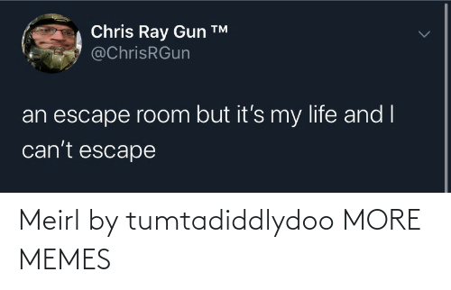 escape: Chris Ray Gun ™  @ChrisRGun  an escape room but it's my life and I  can't escape Meirl by tumtadiddlydoo MORE MEMES
