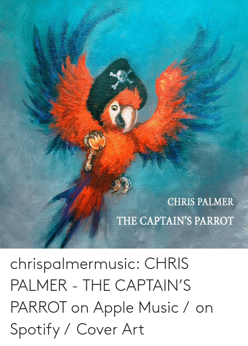 parrot: chrispalmermusic:  CHRIS PALMER - THE CAPTAIN'S PARROT on Apple Music /  on Spotify /  Cover Art