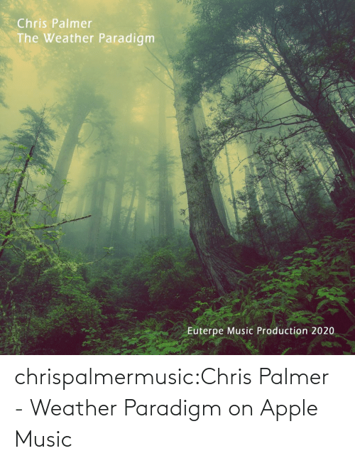 Single: chrispalmermusic:Chris Palmer - Weather Paradigm on Apple Music