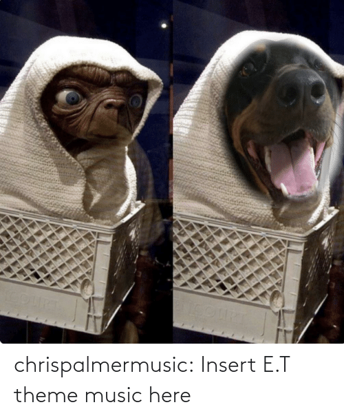 theme: chrispalmermusic:  Insert E.T theme music here