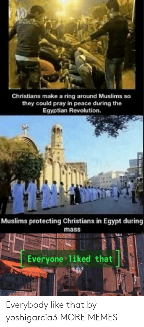 protecting: Christians make a ring around Muslims so  they could pray in peace during the  Egyptian Revolution.  Muslims protecting Christians in Egypt during  mass  Everyone liked that  SGAG Everybody like that by yoshigarcia3 MORE MEMES
