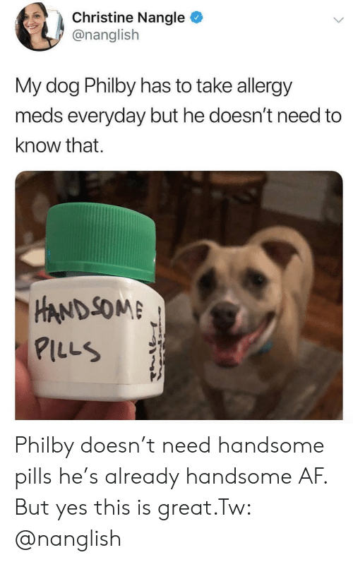 som: Christine Nangle  @nanglish  My dog Philby has to take allergy  meds everyday but he doesn't need to  know that.  HAND SOM  ILLS Philby doesn't need handsome pills he's already handsome AF. But yes this is great.Tw: @nanglish