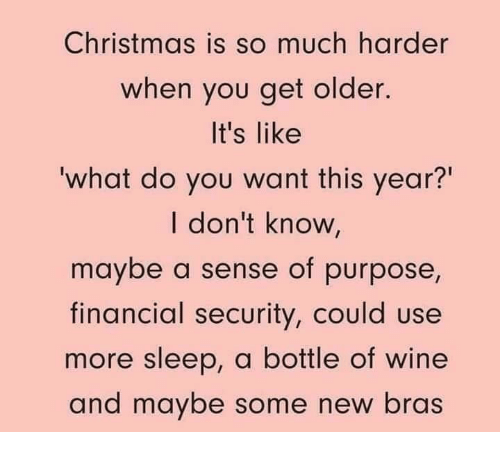 "Christmas, Memes, and Wine: Christmas is so much harder  when you get older.  It's like  what do you want this year?""  I don't know,  maybe a sense of purpose,  financial security, could use  more sleep, a bottle of wine  and maybe some new bras"