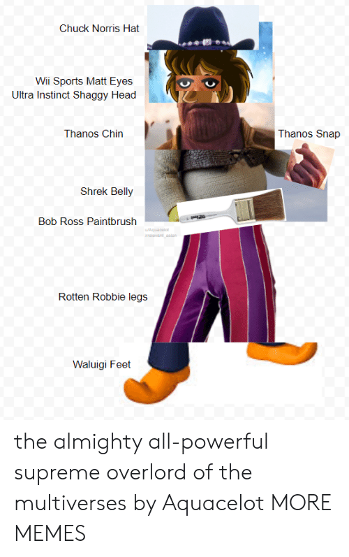 Chuck Norris, Dank, and Head: Chuck Norris Hat  Wii Sports Matt Eyes  Ultra Instinct Shaggy Head  Thanos Chin  Thanos Snap  Shrek Belly  Bob Ross Paintbrush  Rotten Robbie legs j  Waluigi Feet the almighty all-powerful supreme overlord of the multiverses by Aquacelot MORE MEMES