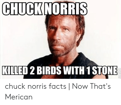 Norris Facts: CHUCK NORRIS  KILLED 2 BIRDS WITH 1 STONE  ROFLBOT chuck norris facts | Now That's Merican