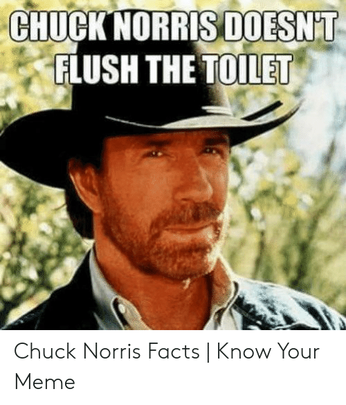 Norris Facts: CHUCKNORRIS DOESN'T  FLUSH THE TOILET Chuck Norris Facts | Know Your Meme
