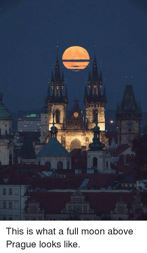 Cic: CIC  hM This is what a full moon above Prague looks like.