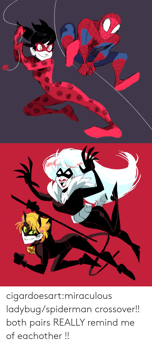 Target, Tumblr, and Blog: cigardoesart:miraculous ladybug/spiderman crossover!! both pairs REALLY remind me of eachother !!