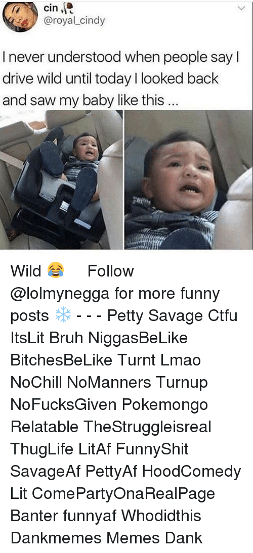 Hoodcomedy: cin  @royal cindy  I never understood when people sayl  drive wild until today l looked back  and saw my baby like this  gHit Wild 😂 ‍ ‍ ⁶𓅓 ➫➫ Follow @lolmynegga for more funny posts ❄️ - - - Petty Savage Ctfu ItsLit Bruh NiggasBeLike BitchesBeLike Turnt Lmao NoChill NoManners Turnup NoFucksGiven Pokemongo Relatable TheStruggleisreal ThugLife LitAf FunnyShit SavageAf PettyAf HoodComedy Lit ComePartyOnaRealPage Banter funnyaf Whodidthis Dankmemes Memes Dank
