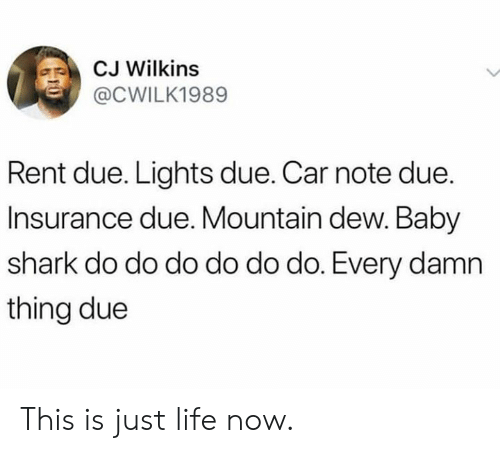 Dank, Life, and Mountain Dew: CJ Wilkins  @CWILK1989  Rent due. Lights due. Car note due.  Insurance due. Mountain dew. Baby  shark do do do do do do. Every damn  thing due This is just life now.