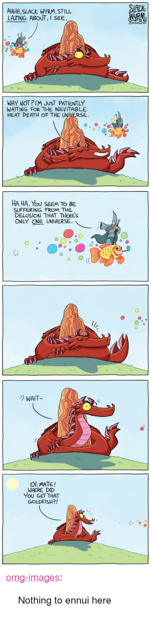 "Goldfish, Omg, and Tumblr: CK  AHHH, SLACk WYRM.STILL  LAZING ABOUT, I SEE  WHY NOT?IM JUST PATIENTLY  WAITING FOR THE INEVITABLE  HEAT DEATH OF THE UNIVERSE.  HA HA. Tou SEEM TO BE  SUFFERING FROM THE  DELUSION THAT THERES  ONLY ONE UNIVERSE.  WAIT  Oi, MATE!  WHERE DID  You GET THAT  GOLDFISH?! <p><a href=""https://omg-images.tumblr.com/post/170444125697/nothing-to-ennui-here"" class=""tumblr_blog"">omg-images</a>:</p>  <blockquote><p>Nothing to ennui here</p></blockquote>"