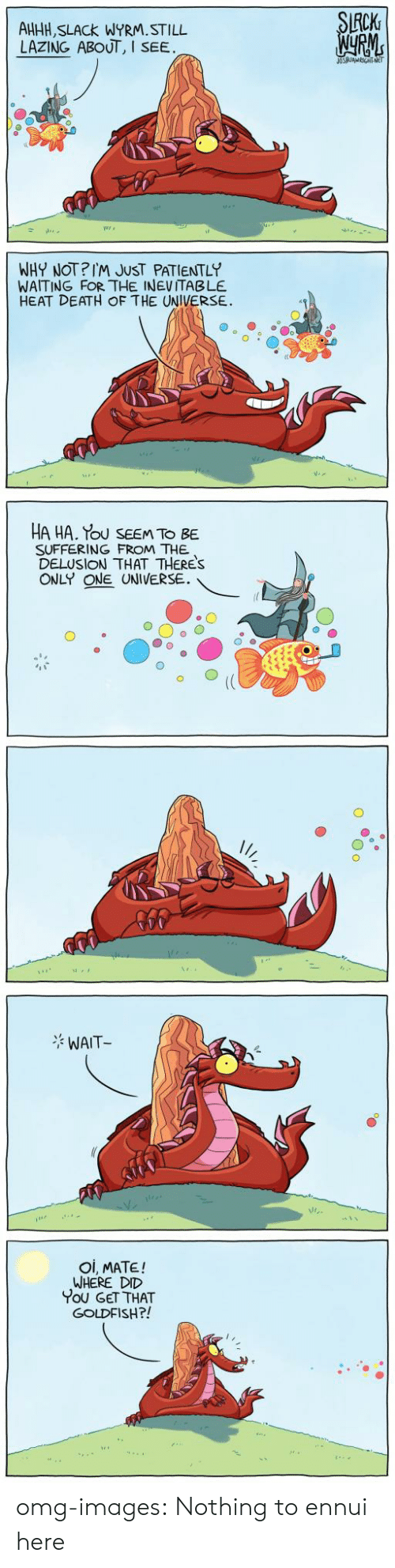 Patiently Waiting: CK  AHHH, SLACk WYRM.STILL  LAZING ABOUT, I  SEE  WHY NOT?IM JUST PATIENTLY  WAITING FOR THE INEVITABLE  HEAT DEATH OF THE UNIVERSE.  HA HA. Tou SEEM TO BE  SUFFERING FROM THE  DELUSION THAT THERES  ONLY ONE UNIVERSE.  WAIT  Oi, MATE!  WHERE DID  You GET THAT  GOLDFISH?! omg-images:  Nothing to ennui here