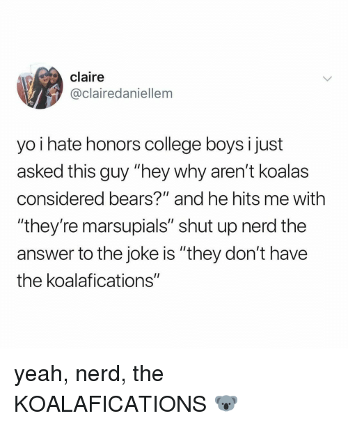 "College, Nerd, and Shut Up: claire  @clairedaniellem  yo i hate honors college boys i just  asked this guy ""hey why aren't koalas  considered bears?"" and he hits me with  ""they're marsupials"" shut up nerd the  answer to the joke is ""they don't have  the koalafications"" yeah, nerd, the KOALAFICATIONS 🐨"