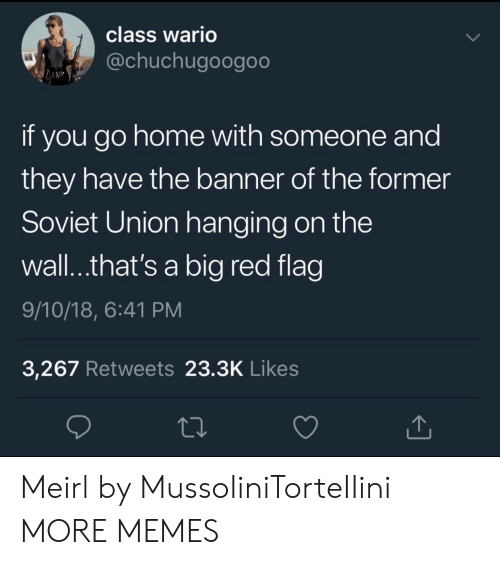Dank, Memes, and Target: class Wario  @chuchugoogoo  if you go home with someone and  they have the banner of the former  Soviet Union hanging on the  wall..that's a big red flag  9/10/18, 6:41 PM  3,267 Retweets 23.3K Likes Meirl by MussoIiniTorteIIini MORE MEMES