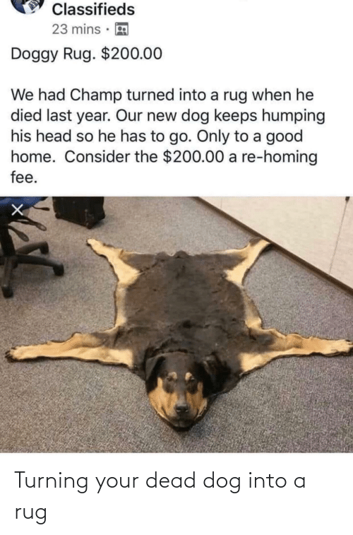 Head, Good, and Home: Classifieds  23 mins ·  Doggy Rug. $200.00  We had Champ turned into a rug when he  died last year. Our new dog keeps humping  his head so he has to go. Only to a good  home. Consider the $200.00 a re-homing  fee. Turning your dead dog into a rug
