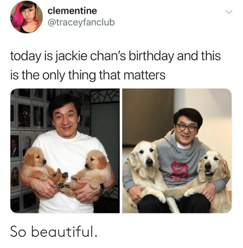 Beautiful, Birthday, and Dank: clementine  @traceyfanclub  today is jackie chan's birthday and this  is the only thing that matters So beautiful.