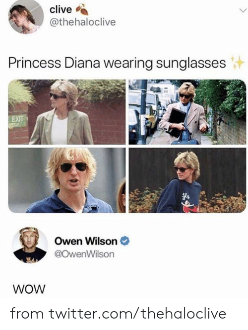 owen: clive  @thehaloclive  Princess Diana wearing sunglasses  EXIT  Owen Wilson  @OwenWilson  WOW from twitter.com/thehaloclive