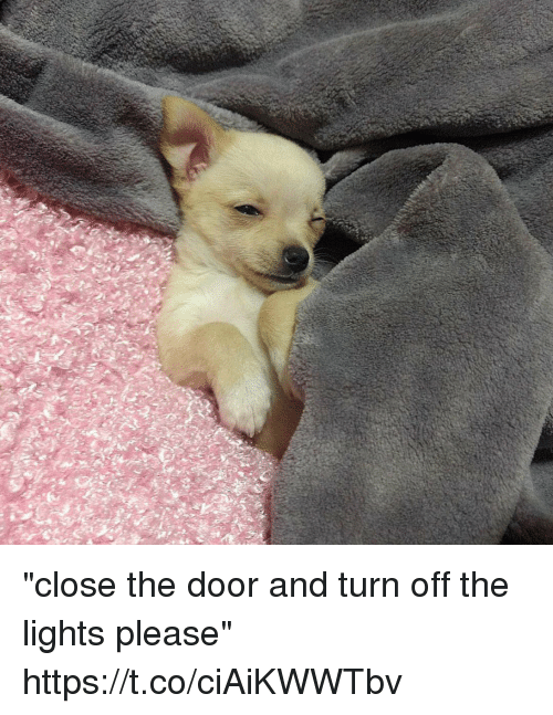 "turn offs: ""close the door and turn off the lights please"" https://t.co/ciAiKWWTbv"