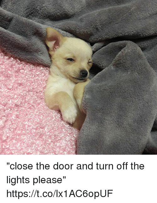 "turn offs: ""close the door and turn off the lights please"" https://t.co/lx1AC6opUF"