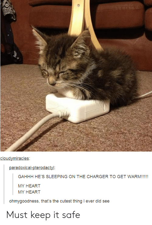 Heart, Sleeping, and Charger: cloudymiracles  paradoxical-pterodactyl  GAHHH HE'S SLEEPING ON THE CHARGER TO GET WARM!!!!!  MY HEART  MY HEART  ohmygoodness, that's the cutest thing I ever did see Must keep it safe