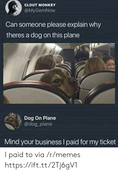 clout: CLOUT MONKEY  @MyGemNow  Can someone please explain why  theres a dog on this plane  Dog On Plane  @dog_plane  Mind your business I paid for my ticket I paid to via /r/memes https://ift.tt/2Tj6gV1
