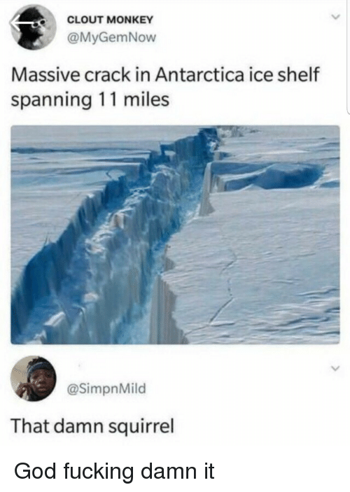 Fucking, God, and Monkey: CLOUT MONKEY  @MyGemNow  Massive crack in Antarctica ice shelf  spanning 11 miles  @SimpnMild  That damn squirrel God fucking damn it