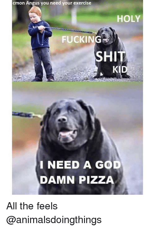 holy fucking shit: cmon Angus you need your exercise  HOLY  FUCKING  SHIT  KID  INEED A GOD  DAMN PIZZA All the feels @animalsdoingthings