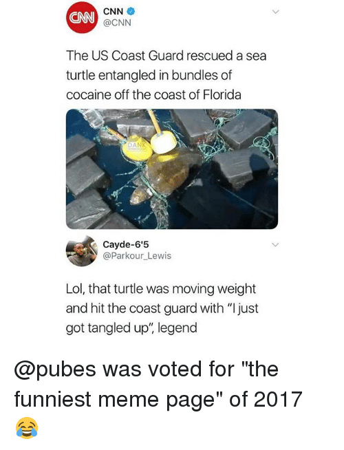 """cnn.com, Lol, and Meme: CNN  CNN  @CNN  The US Coast Guard rescued a sea  turtle entangled in bundles of  cocaine off the coast of Florida  DAN  @Parkour_Lewis  Lol, that turtle was moving weight  and hit the coast guard with """"Ijust  got tangled up"""", legend @pubes was voted for """"the funniest meme page"""" of 2017 😂"""