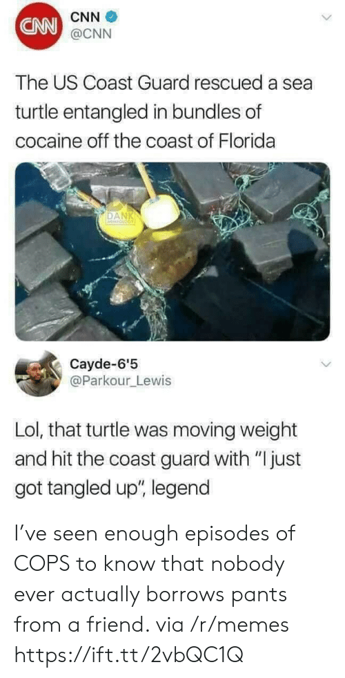 """A Sea: CNN  CNN  @CNN  The US Coast Guard rescued a sea  turtle entangled in bundles of  cocaine off the coast of Florida  DAN  Cayde-6'5  @Parkour_Lewis  Lol, that turtle was moving weight  and hit the coast guard with """"Ijust  got tangled up"""", legend I've seen enough episodes of COPS to know that nobody ever actually borrows pants from a friend. via /r/memes https://ift.tt/2vbQC1Q"""