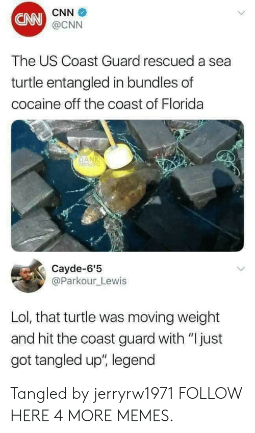 """A Sea: CNN  CNN  @CNN  The US Coast Guard rescued a sea  turtle entangled in bundles of  cocaine off the coast of Florida  DAN  Cayde-6'5  @Parkour_Lewis  Lol, that turtle was moving weight  and hit the coast guard with """"Ijust  got tangled up"""", legend Tangled by jerryrw1971 FOLLOW HERE 4 MORE MEMES."""
