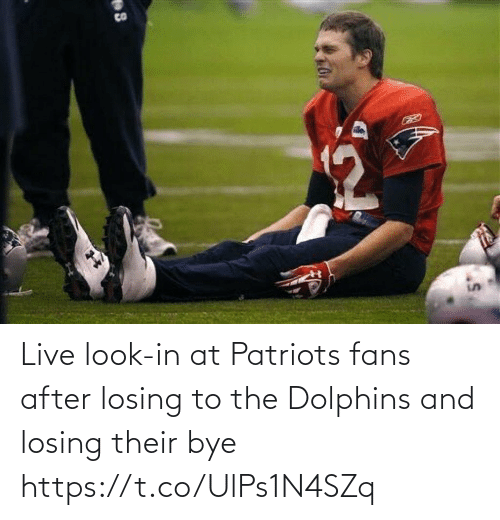 Dolphins: CO Live look-in at Patriots fans after losing to the Dolphins and losing their bye https://t.co/UlPs1N4SZq