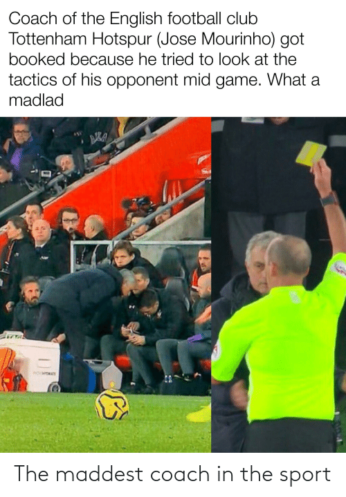 tottenham: Coach of the English football club  Tottenham Hotspur (Jose Mourinho) got  booked because he tried to look at the  tactics of his opponent mid game. What a  madlad  WOWMOA The maddest coach in the sport