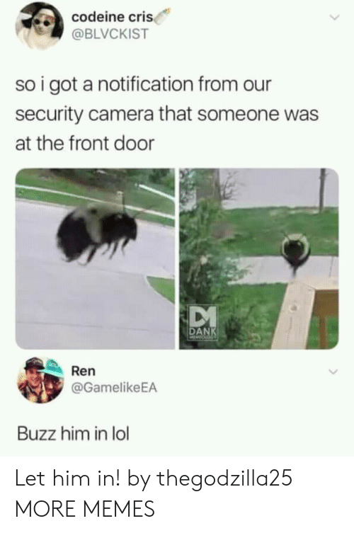 Dank, Lol, and Memes: codeine cri  @BLVCKIST  so i got a notification from our  security camera that someone was  at the front door  DANK  Ren  @GamelikeEA  Buzz him in lol Let him in! by thegodzilla25 MORE MEMES