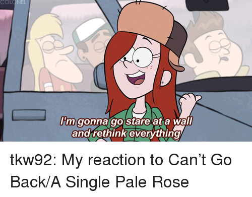 Target, Tumblr, and Blog: COl  Itm  m gonna go starelat a wall  and rethink everything tkw92:  My reaction to Can't Go Back/A Single Pale Rose