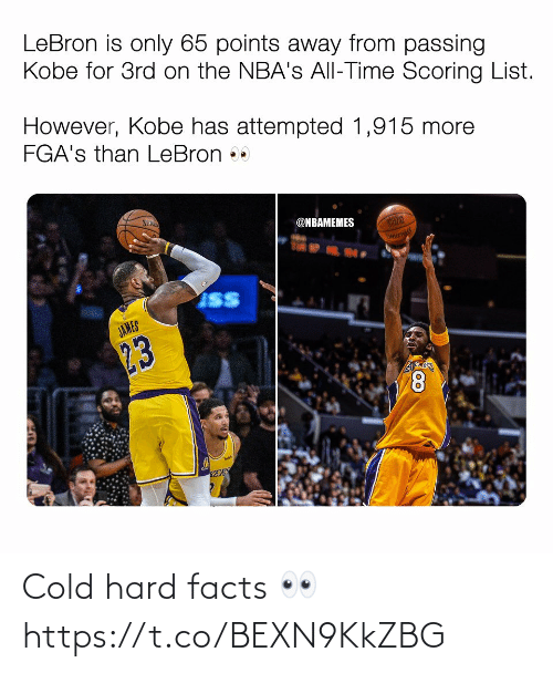 ballmemes.com: Cold hard facts 👀 https://t.co/BEXN9KkZBG