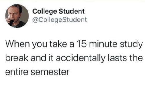 study: College Student  @CollegeStudent  When you take a 15 minute study  break and it accidentally lasts the  entire semester