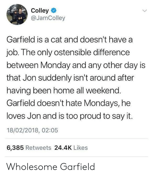 Mondays, Say It, and Home: Colley  @JamColley  ce  Garfield is a cat and doesn't have a  job. The only ostensible difference  between Monday and any other day is  that Jon suddenly isn't around after  having been home all weekend.  Garfield doesn't hate Mondays, he  loves Jon and is too proud to say it.  18/02/2018, 02:05  6,385 Retweets 24.4K Likes Wholesome Garfield