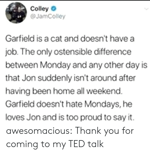 Mondays, Ted, and Tumblr: Colley  @JamCosey  4.  Garfield is a cat and doesn't have a  job. The only ostensible difference  between Monday and any other day is  that Jon suddenly isn't around after  having been home all weekend  Garfield doesn't hate Mondays, he  loves Jon and is too proud to say it. awesomacious:  Thank you for coming to my TED talk