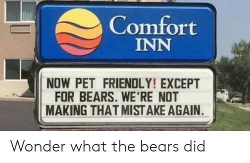 mist: Comfort  INN  NOW PET FRIENDLY! EXCEPT  FOR BEARS. WE'RE NOT  MAKING THAT MIST AKE AGAIN Wonder what the bears did