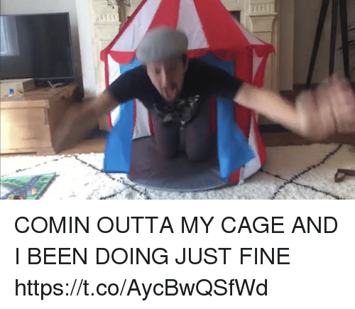Memes, Outta, and Been: COMIN OUTTA MY CAGE AND I BEEN DOING JUST FINE https://t.co/AycBwQSfWd