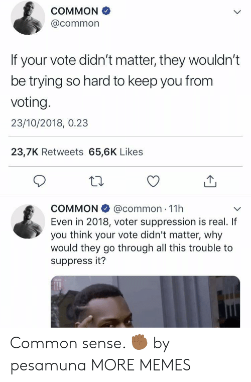 Dank, Memes, and Target: COMMON  @common  If your vote didn't matter, they wouldn't  be trying so hard to keep you from  voting.  23/10/2018, 0.23  23,7K Retweets 65,6K Likes  COMMON @common 11h  Even in 2018, voter suppression is real. If  you think your vote didn't matter, why  would they go through all this trouble to  suppress it? Common sense. ✊🏾 by pesamuna MORE MEMES