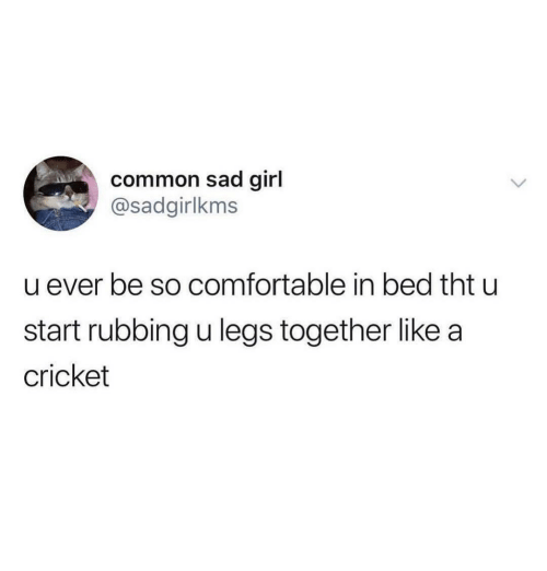Comfortable, Common, and Cricket: common sad girl  @sadgirlkms  u ever be so comfortable in bed tht u  start rubbing u legs together like a  cricket