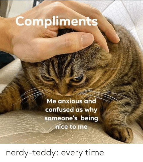 Compliments: Compliments  Me anxious and  confused as why  someone's being  nice to me nerdy-teddy:  every time