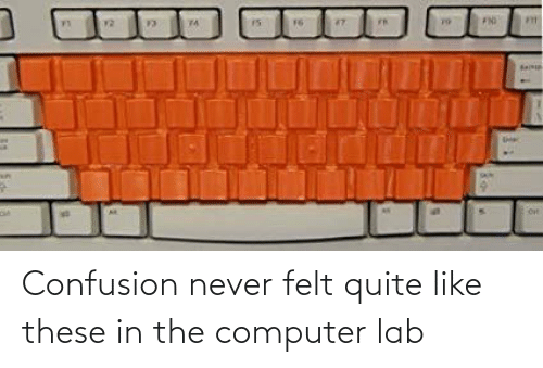 in-the-computer: Confusion never felt quite like these in the computer lab